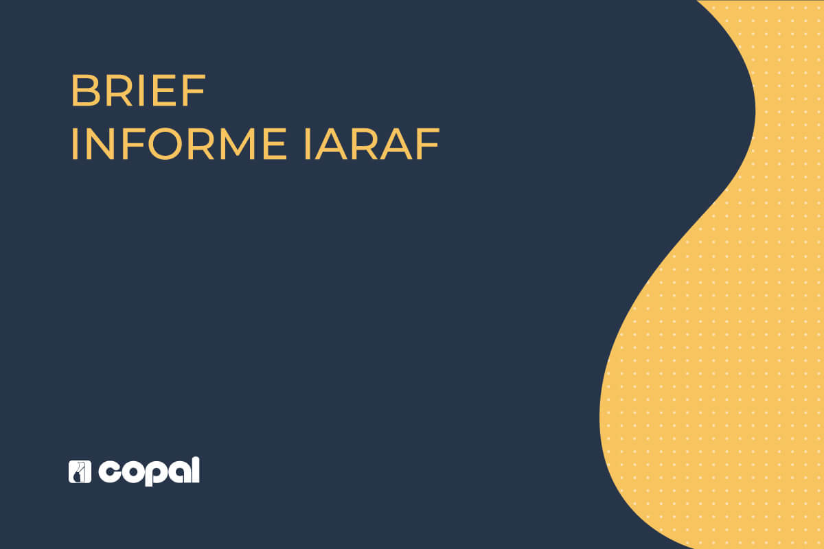 Brief Informe IARAF